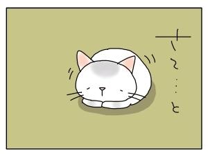 猫と一緒-20120111_06