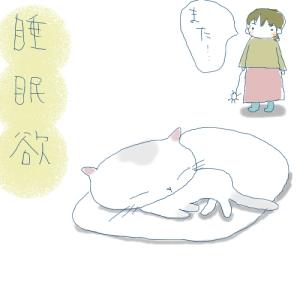 猫と一緒-20071009_2
