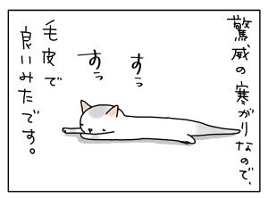 猫と一緒-20110722_11