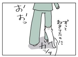猫と一緒-20130529_14