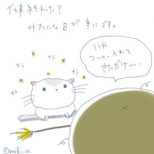 猫と一緒-20070601