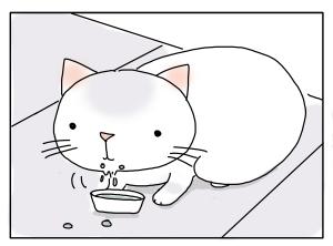 猫と一緒-20100217_18