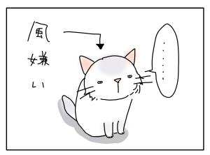 猫と一緒-20100615_07