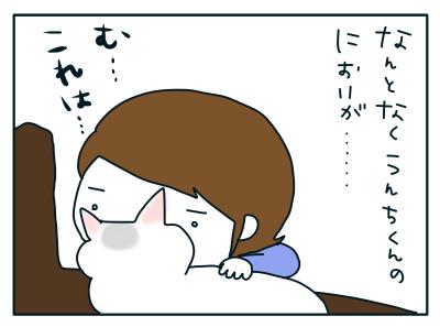 20190131_02