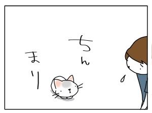 猫と一緒-20110722_07