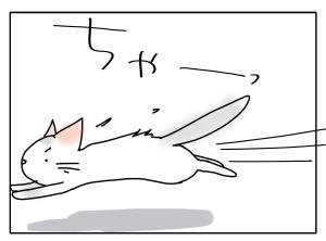 猫と一緒-20110501_05