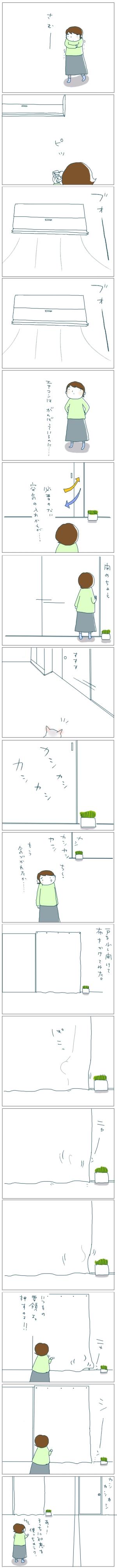 猫と一緒-20081122