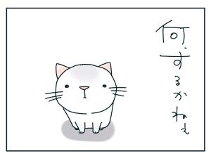 猫と一緒-20100125_03