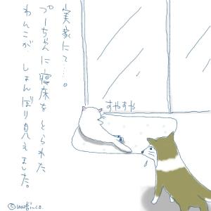 猫と一緒-20070620