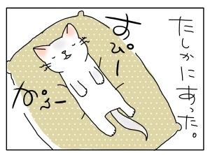猫と一緒-20100425_05