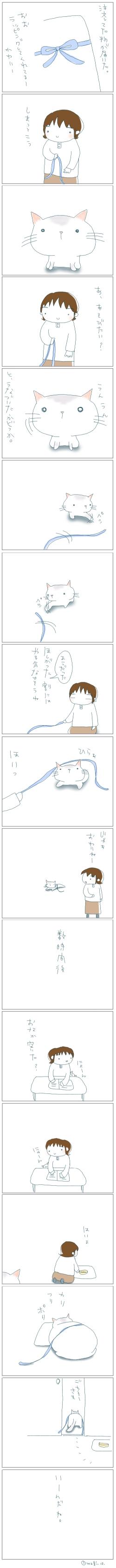 猫と一緒-20080319