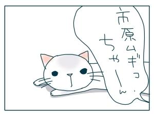 猫と一緒-20091216_08
