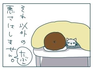 猫と一緒-20091219_14