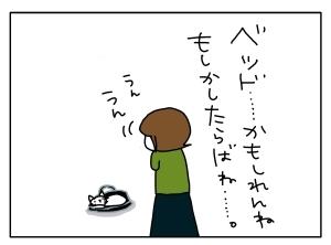 猫と一緒-20121002_13
