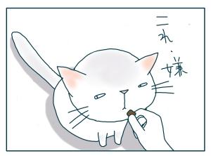 猫と一緒-20090821_13