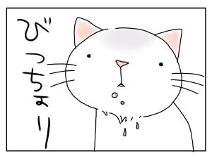 猫と一緒-20100217_03