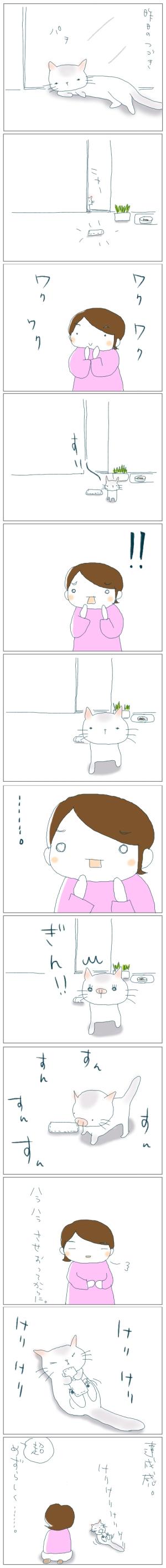 猫と一緒-20080520