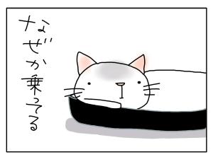 猫と一緒-20121002_07