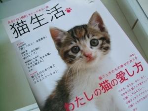 猫と一緒-20120813_06P