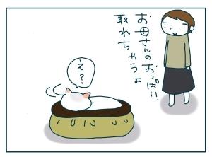 猫と一緒-20091114_13