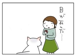 猫と一緒-20100421_17