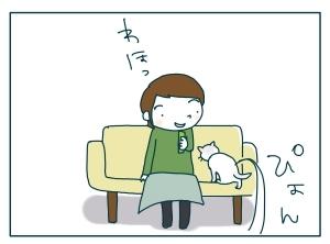 猫と一緒-20091118_04