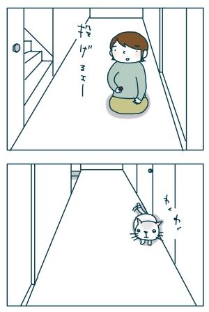 猫と一緒-20090117-01