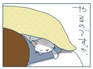 猫と一緒-20091114_04