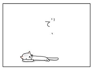 猫と一緒-20100618_11