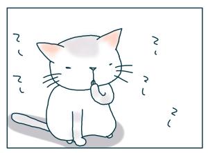 猫と一緒-20090124-07