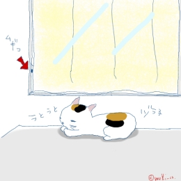 猫と一緒-20061124