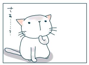 猫と一緒-20090124-13