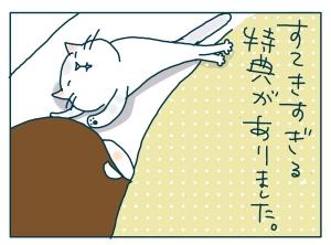 猫と一緒-20090519_21