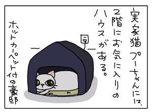 猫と一緒-201203013_01