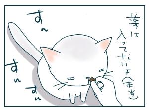 猫と一緒-20090821_17