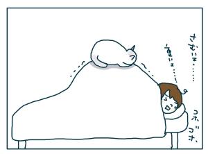 猫と一緒-20090126-05