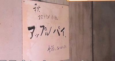 鎌倉山「ユスラウメ」