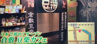 倉敷 豆柴カフェ