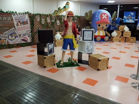 s-【ルフィー&エアーチョッパー】展示