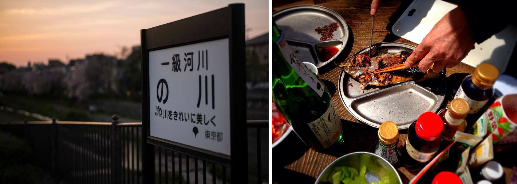 hanami2014_musashinokoen