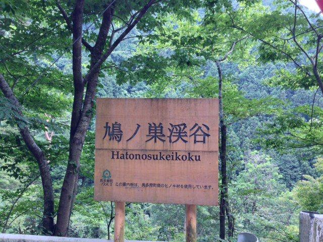 hatonosu
