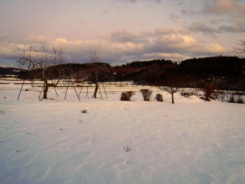 snow191220