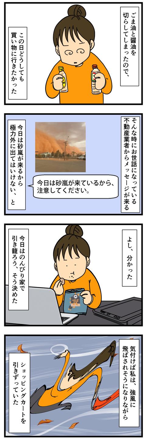 砂嵐の中をさすらうのさ (2)