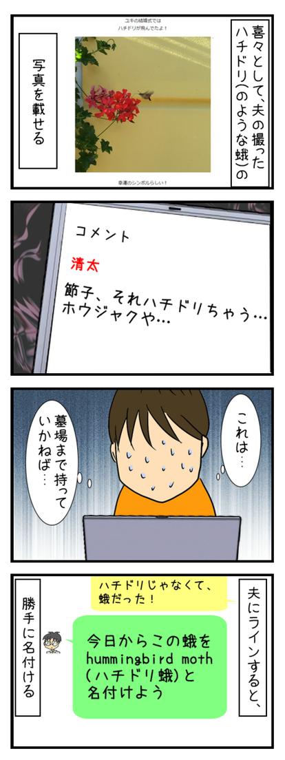 ハチドリ_003