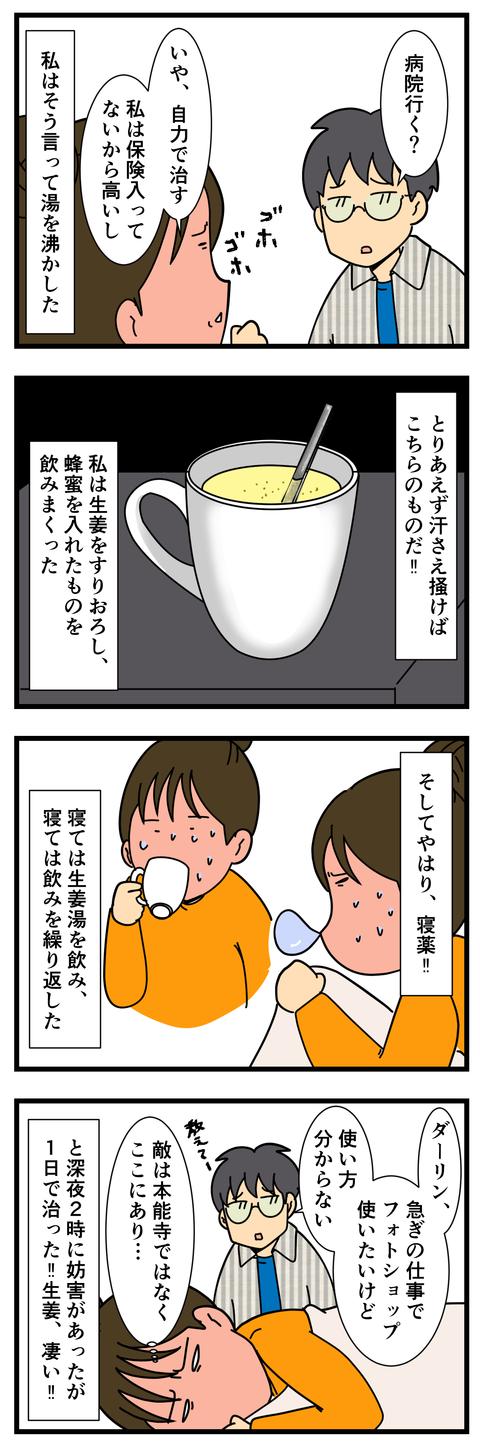 風邪を引いたらこれが効く (3)
