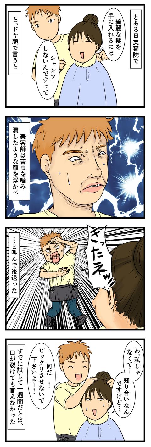 髪のお手入れ (3)