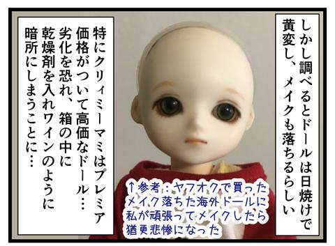 ドールと私 (5)