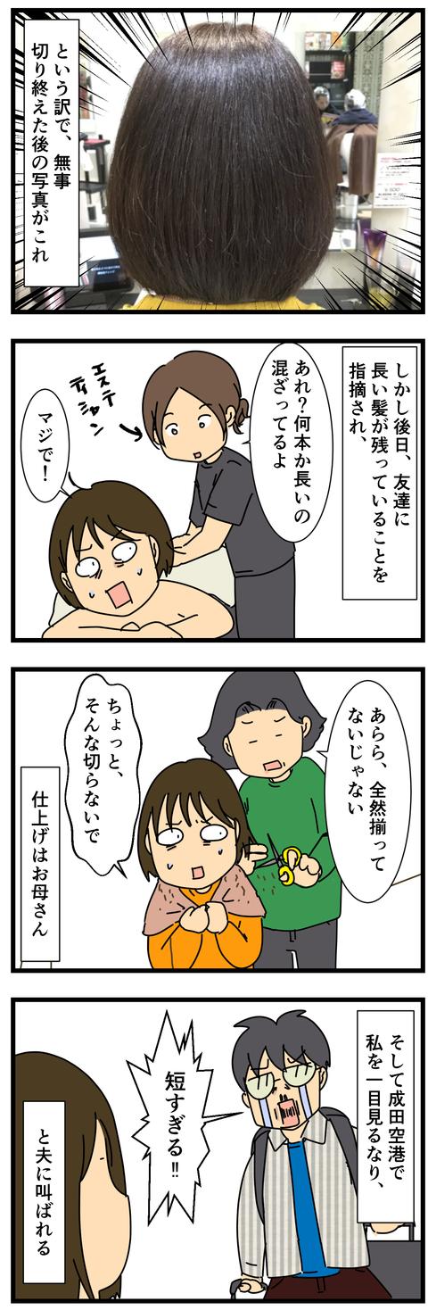 ヘアドネーション (3)