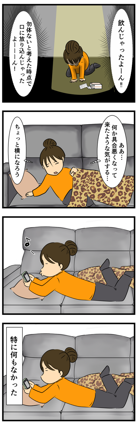 ゼニカル2 (2)
