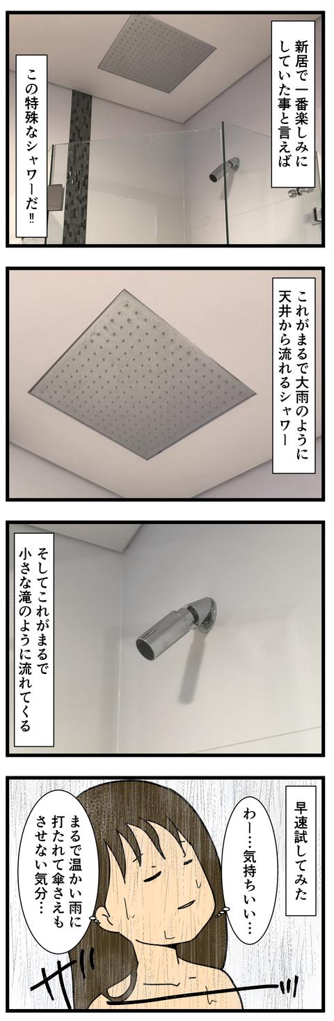 特殊なシャワー (2)